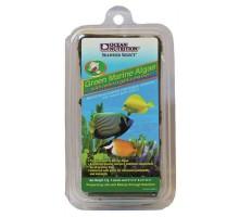 Ocean Nutrition Green Marine Algae maistas žuvims; 150g