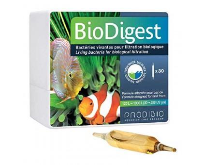 Prodibio Bio Digest bakterijų tirpalas; 30vnt